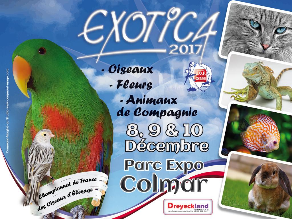 Affiche Exotica 2017