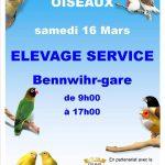 Bourse aux oiseaux à Élevage Service 2019