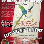 Exotica 2016