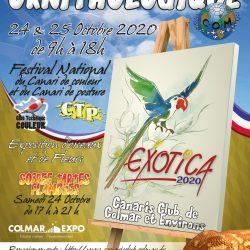 Exotica-2020